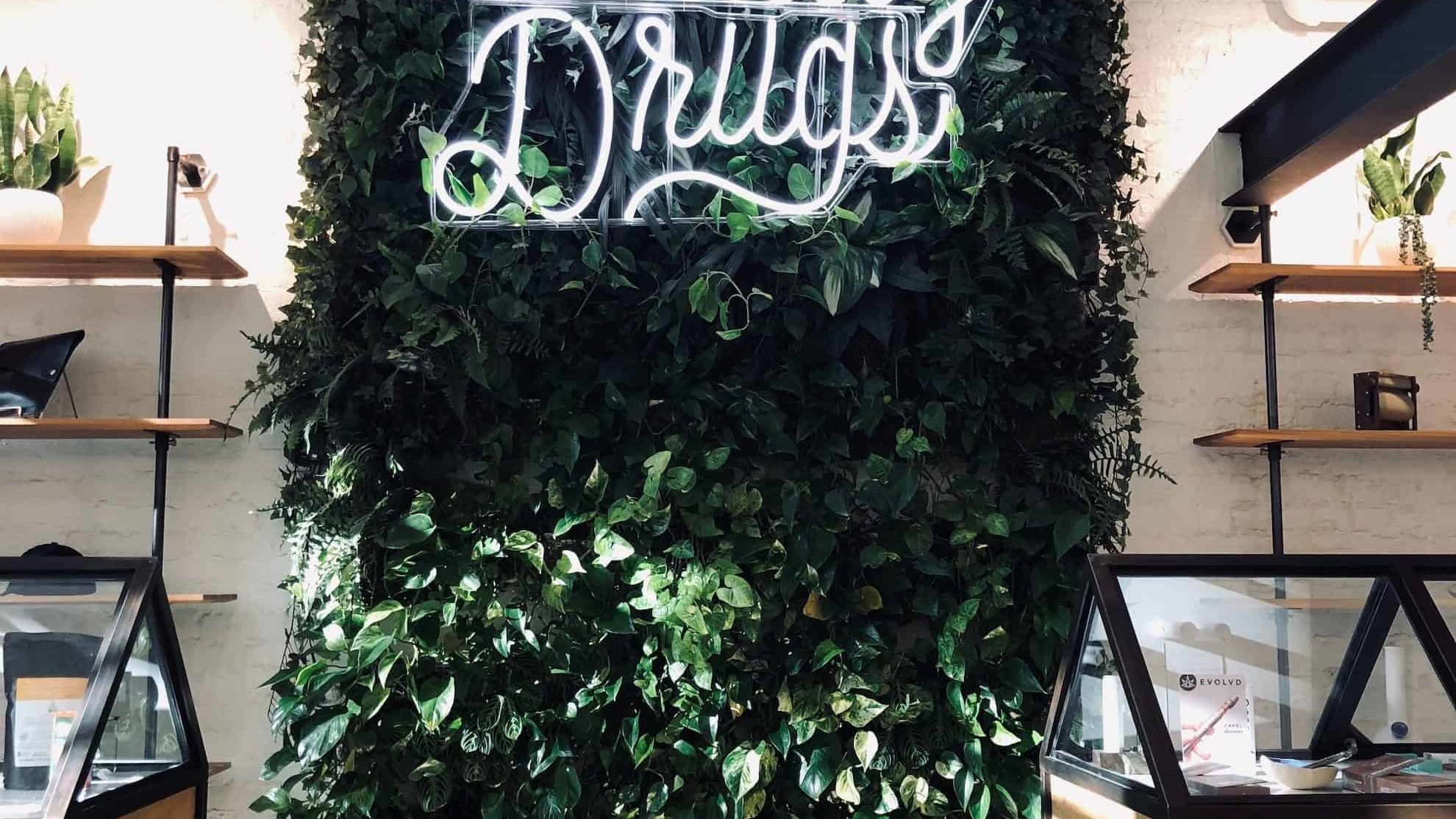 lit cannabis dispensay digital marketing agency