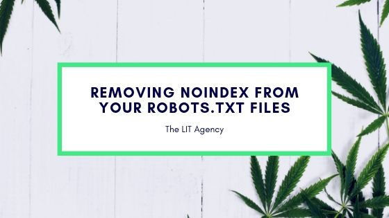 Removing Noindex From Your Robots.txt Files