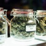lit agency Marketing Industry Braces Cannabis 2.0